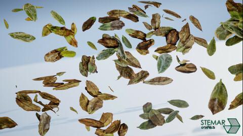 Dead Leaves Vegetation Assets HQ Texures