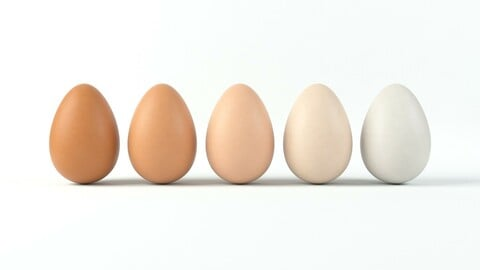 Realistic Egg with 4k PBR textures and 5 different colors