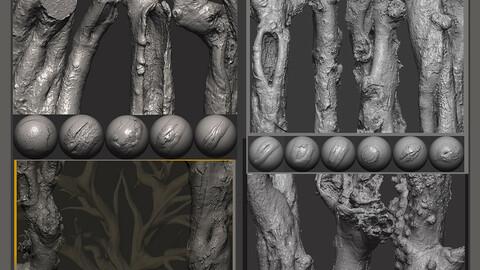 Z brush - Trunk Detail Brushes 4 Volumes