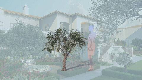 3D olive tree olea europaea decorative b