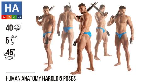 Human Anatomy |  Herold 5 Fighting Poses | 40 Photos