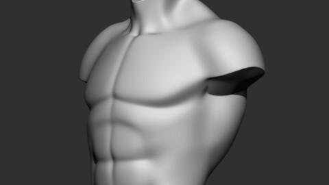 torso 3d print model