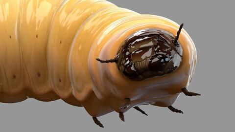 Maggot Rigged