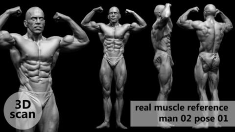 3D scan real muscleanatomy Man02 pose 01