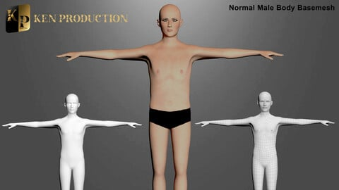 Normal Male Body Base Mesh