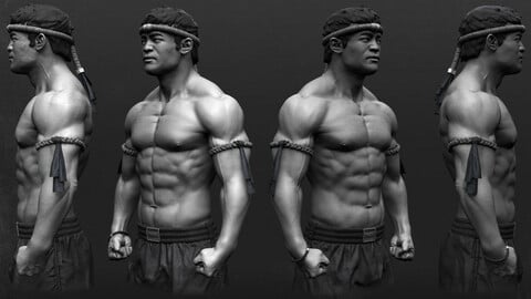 Thaï Boxer Anatomy study - Decimated .ztl