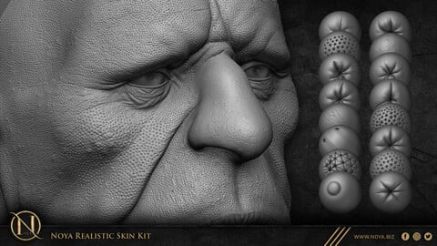 Zbrush - Noya Realistic Skin Kit ( Handmade Brushes + 4.5 Hours Video )
