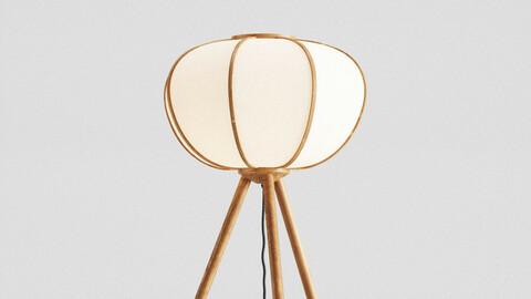 H&M Bamboo floor lamp 3d model