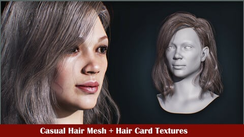 Casual hairstyle mesh + textures + marmoset scene
