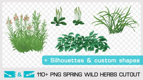 SPRING WILD HERBS CUTOUT - Traditional and numeric painting pack - 110+ PNG & FREE Silhouettes + Custom Shapes & 1 bonus PSD