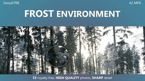 Frost environment - 53  HIGH QUALITY photos, 42 MPX