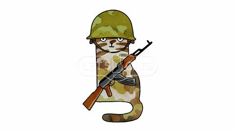 Infantry Fighter Cat