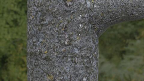 Tree Bark 15 PBR Material