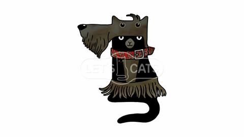 Scotch terrier Cat