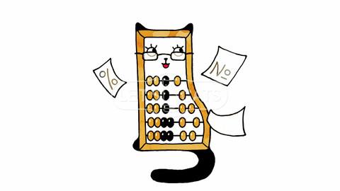 Cat Accountant