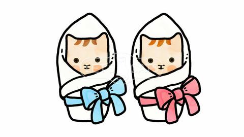 Kittens Babies