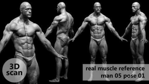 3D scan real muscleanatomy Man05 pose 01