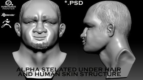 Package Alf stylized under hair and human skin structure