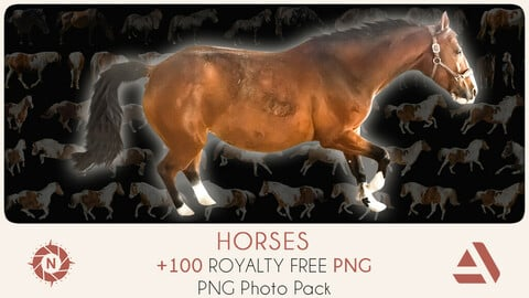 PNG Photo Pack: Horses