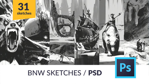 31 BNW Sketches / PSDs