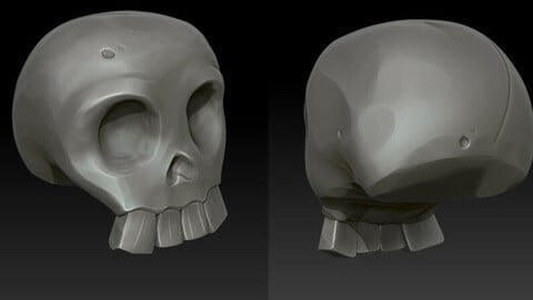 Skull Hi poly and Game res Asset.