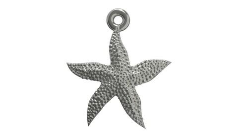 Starfish superb 3D print model
