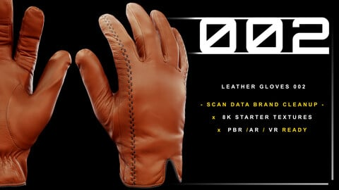 Leather Gloves 002