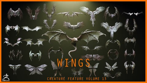 WINGS - 33 Character & Creature wings