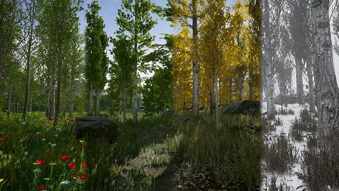 UE4 - Scanned Poplar and Aspen Forest with Seasons