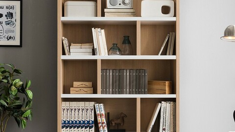 Barton 120cm 5-layer bookcase 9color