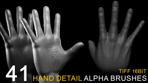 41 HAND DETAIL alpha brush bundle
