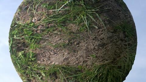 Dirt Grass 7 PBR Material