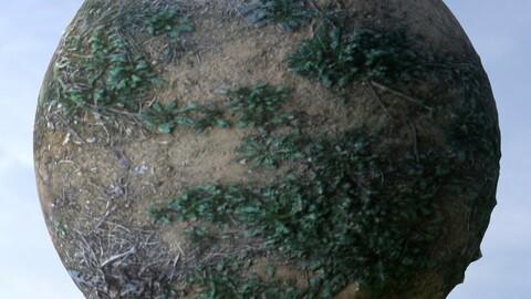 Sand Grass 2 PBR Material