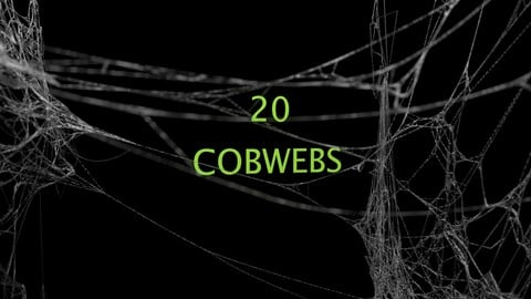 Cobwebs BUNDLE