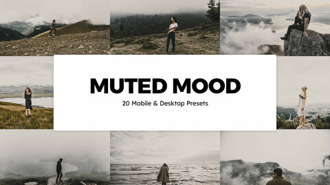 20 Muted Mood LUTs and Lightroom Presets