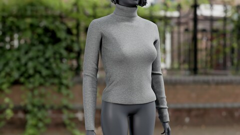 Realistic 3D model of Pullover 2