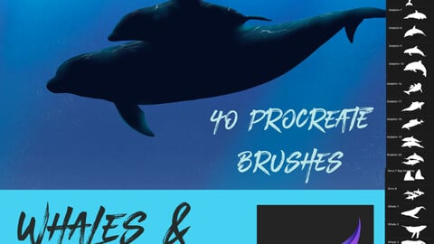 40 Dolphin & Whale Brushes for Procreate