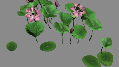 Elves Villa - lotus 04