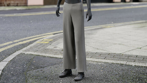 Realistic 3D model of Womens Pants 6