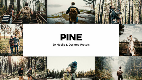 20 Pine LUTs and Lightroom Presets
