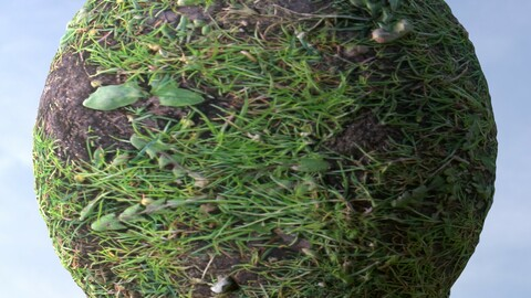 Grass 10 PBR Material