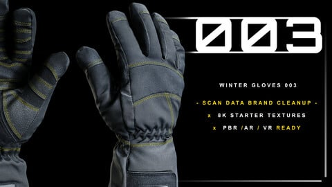Winter Gloves 003