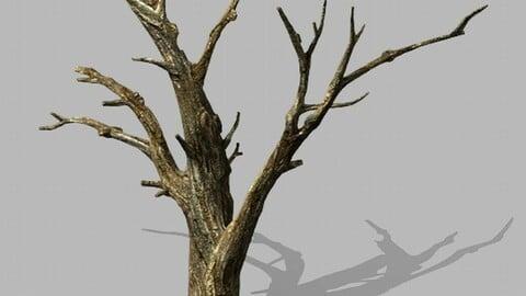 Brutal tribe - dead tree 02