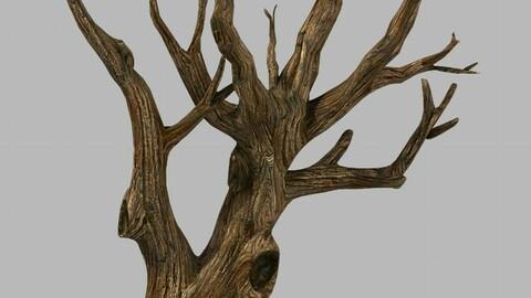 Brutal tribe - dry tree 03
