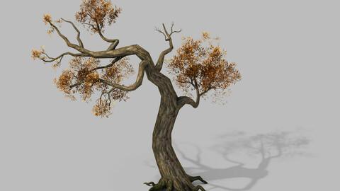 Brutal tribes - dead trees 05