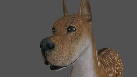 FDGD.002 Dog animation