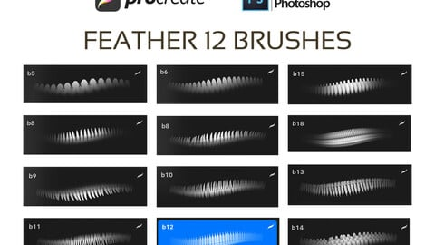 FEATHER 12 BRUSHES