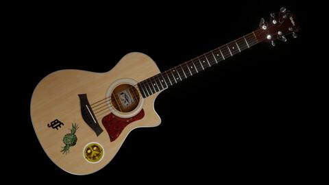 Taylor Guitar 313ce