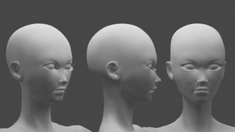 modelled but not rigged or texture female character