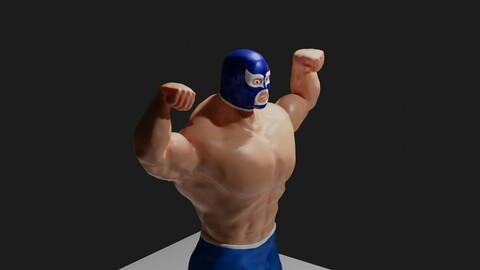 Masked Fighter - Lucha Libre - Wrestling 3D model